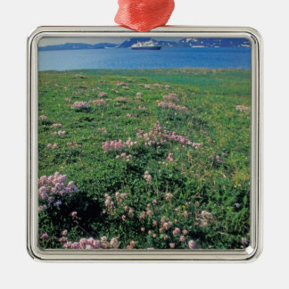 NA, USA, Alaska, Aleutian Island, Scenic with Christmas Ornament