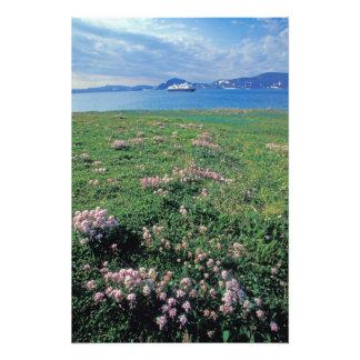 NA, USA, Alaska, Aleutian Island, Scenic with Photo Art