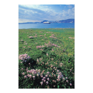 NA, USA, Alaska, Aleutian Island, Scenic with Photo Print