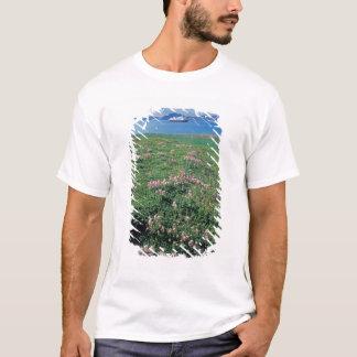 NA, USA, Alaska, Aleutian Island, Scenic with T-Shirt