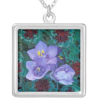 NA, USA, Alaska, Aleutian Islands, Wildflowers 2 Square Pendant Necklace