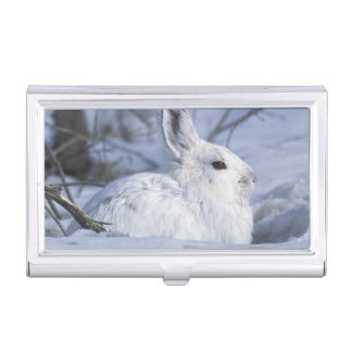 NA, USA, Alaska. Arctic National Wildlife Business Card Holder