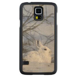 NA, USA, Alaska. Arctic National Wildlife Carved Maple Galaxy S5 Case