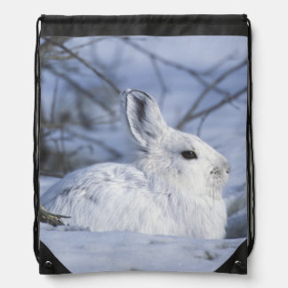 NA, USA, Alaska. Arctic National Wildlife Drawstring Bag
