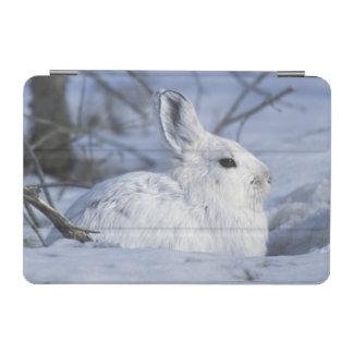 NA, USA, Alaska. Arctic National Wildlife iPad Mini Cover