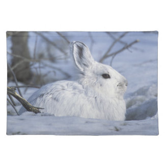NA, USA, Alaska. Arctic National Wildlife Placemat