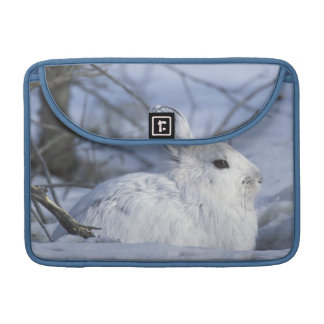NA, USA, Alaska. Arctic National Wildlife Sleeve For MacBook Pro