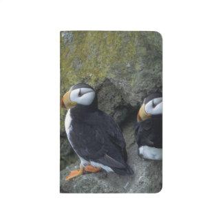 NA, USA, Alaska, Bering Sea, Pribilofs, St. Journal