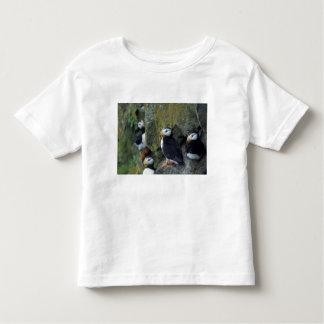 NA, USA, Alaska, Bering Sea, Pribilofs, St. Toddler T-Shirt