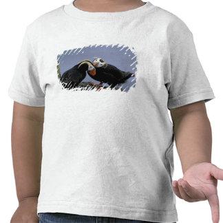 NA, USA, Alaska, Bering Sea, Pribilofs. Tufted Tshirts