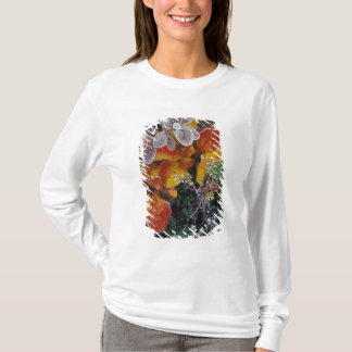 NA, USA, Alaska. Denali National Park. Bearberry 3 T-Shirt