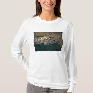 NA, USA, Alaska, Denali NP, Beaver collecting T-Shirt