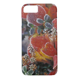 NA, USA, Alaska, Denali NP Frosted, fall-colored iPhone 8/7 Case