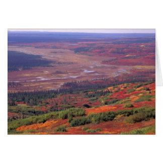 NA, USA, Alaska, Denali NP, View of McKinley Card