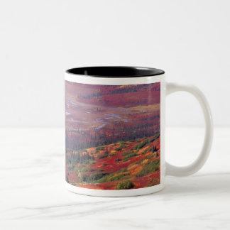 NA, USA, Alaska, Denali NP, View of McKinley Two-Tone Coffee Mug