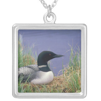 NA, USA, Alaska, Denali NP, Wonder Lake, 2 Silver Plated Necklace