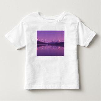NA, USA, Alaska, Denali NP, Wonder Lake, Evening Toddler T-Shirt