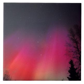 NA, USA, Alaska, Fairbanks, Curtains of pink and Tile
