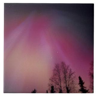 NA, USA, Alaska, Fairbanks. Curtains of purple, 2 Tile