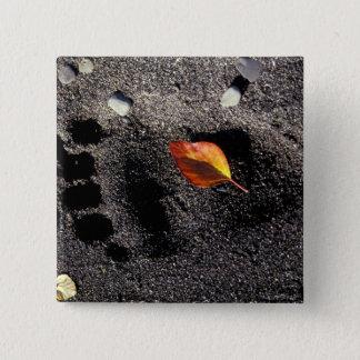 NA, USA, Alaska, Katmai NP, Brown bear pawprint 15 Cm Square Badge
