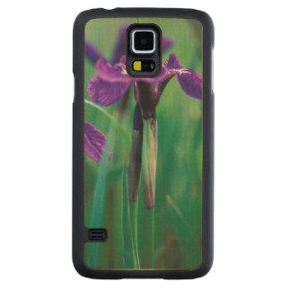 NA, USA, Alaska, Knight Island, Wild iris Carved Maple Galaxy S5 Case