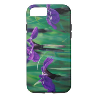 NA, USA, Alaska, Knight Island, Wild iris iPhone 8/7 Case