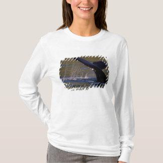 NA, USA, Alaska, Southeast Alaska, Inside 3 T-Shirt