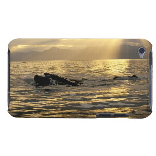 NA, USA, Alaska, Southeast Alaska, Inside iPod Case-Mate Case
