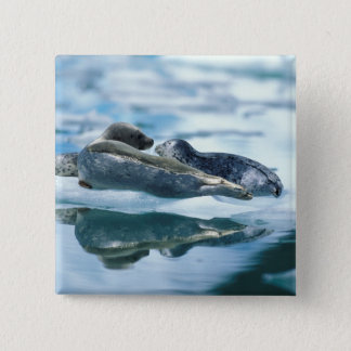 NA, USA, Alaska, Southeast Alaska, Le Conte 2 15 Cm Square Badge