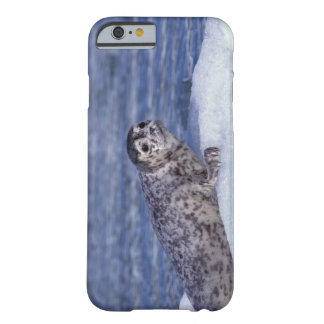 NA, USA, Alaska, Southeast Alaska, Le Conte Barely There iPhone 6 Case