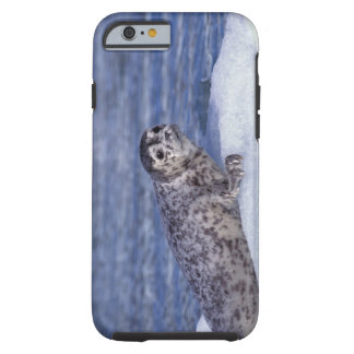NA, USA, Alaska, Southeast Alaska, Le Conte Tough iPhone 6 Case