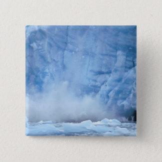 NA, USA, Alaska, Southeast Alaska, Tracy Arm, 15 Cm Square Badge
