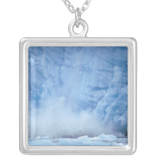 NA, USA, Alaska, Southeast Alaska, Tracy Arm, Silver Plated Necklace