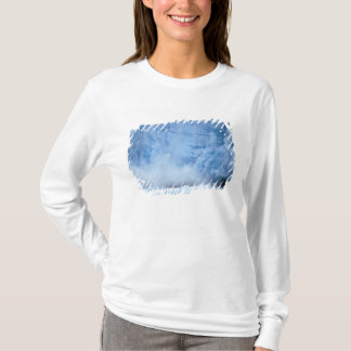 NA, USA, Alaska, Southeast Alaska, Tracy Arm, T-Shirt