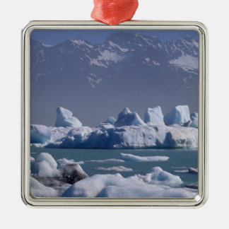 NA, USA, Alaska, St. Elias Range, Alsek River, Christmas Ornament