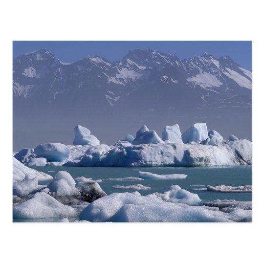 NA, USA, Alaska, St. Elias Range, Alsek River,