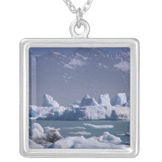 NA, USA, Alaska, St. Elias Range, Alsek River, Silver Plated Necklace