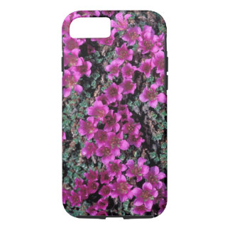 NA, USA, Alaska, Wildflowers iPhone 8/7 Case