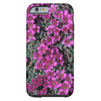 NA, USA, Alaska, Wildflowers Tough iPhone 6 Case
