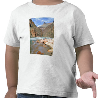 NA, USA, Arizona. Grand Canyon National Park. 2 Tee Shirt