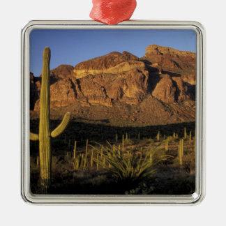 NA, USA, Arizona. Organ Pipe Cactus National 2 Christmas Ornament