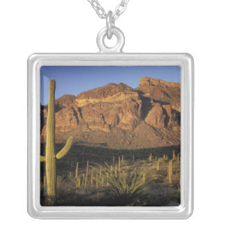 NA, USA, Arizona. Organ Pipe Cactus National 2 Silver Plated Necklace
