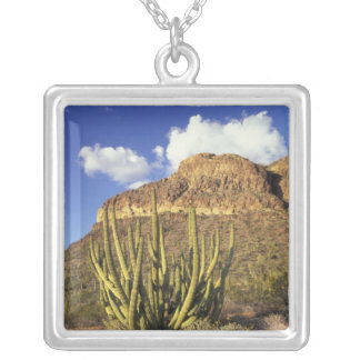 NA, USA, Arizona. Organ Pipe Cactus National 3 Silver Plated Necklace