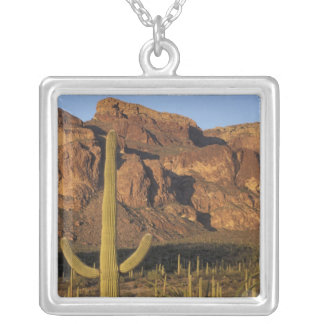NA, USA, Arizona. Organ Pipe Cactus National Silver Plated Necklace