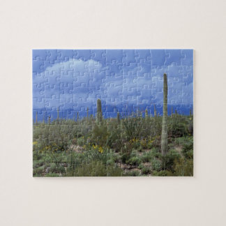 NA, USA, Arizona, Saguaro National Monument, Jigsaw Puzzle