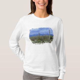 NA, USA, Arizona, Saguaro National Monument, T-Shirt