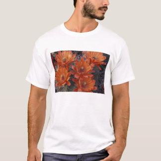 NA, USA, Arizona, San Xavier. Claret Cup cactus T-Shirt