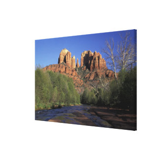 NA, USA, Arizona, Sedona. Cathedral Rock and Oak Canvas Print