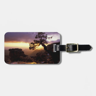 NA, USA, Arizona, Tucson, Sunset and lone Luggage Tag
