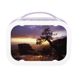 NA, USA, Arizona, Tucson, Sunset and lone Lunch Box